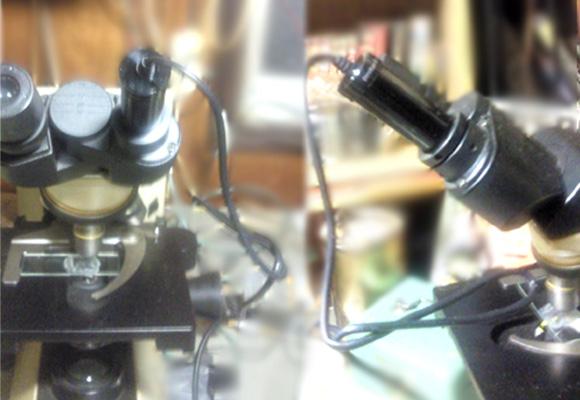 顕微鏡接続後.jpg