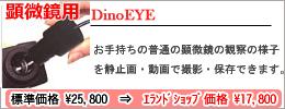 Dino eye